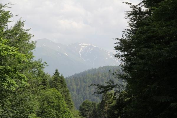Природа в Гузерипле_2