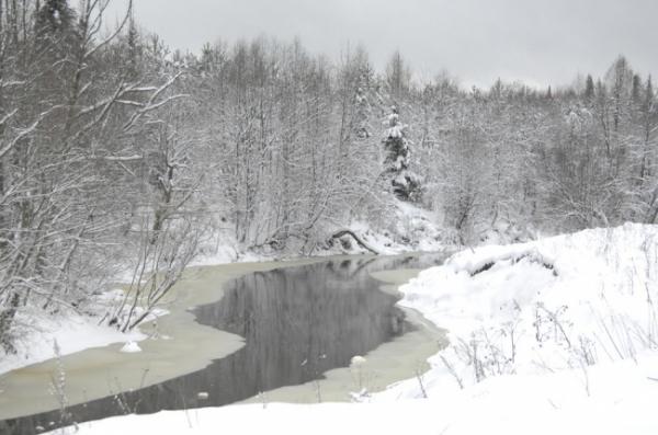 Зима_20