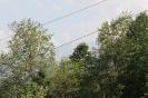 Природа в Гузерипле_12