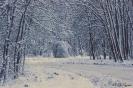 Мини-ралли Апшеронск-2013 декабрь  (зима) _39