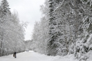 Зима_19